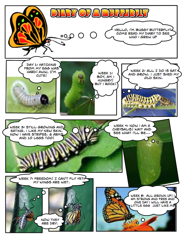 understanding comics essay Source and inspiration: this comic was based on this essay from augusten  burroughs: how to live unhappily ever after in addition to the essay, i highly.