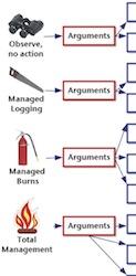 fire arguments
