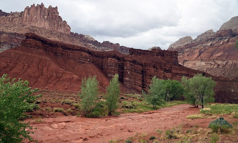 Capitol Reef Flooding